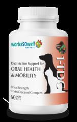 1-TDC Periodontal & Joint Health kaps       60 kpl